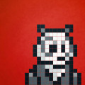 panda-D-2