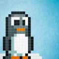 pinguin-D-2