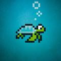 turtle-D-1