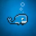 whale-D-1